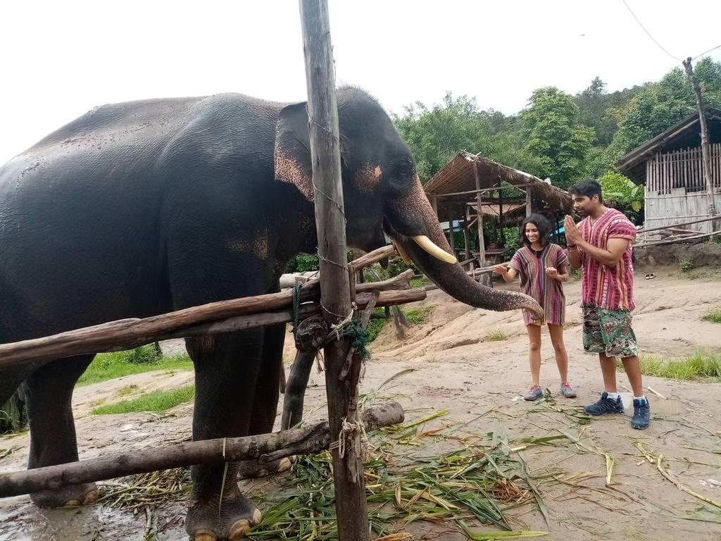 31st August 2019, full day Thong Elephant